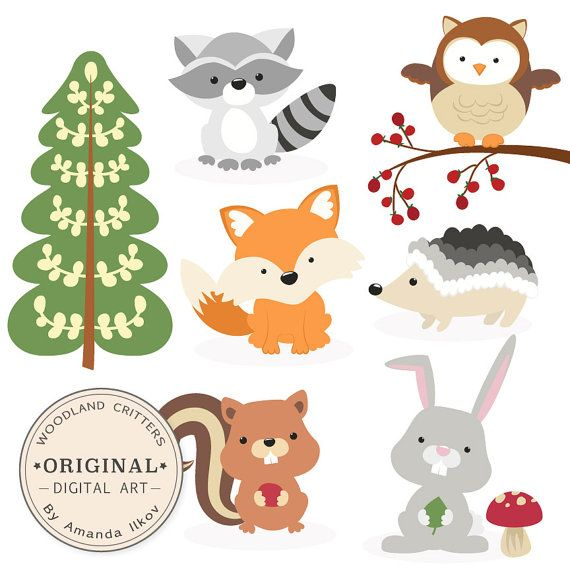 Premium Woodland Animals Clip Art & Vectors - Woodland Clipart, Forest Animal Clipart, Woodland Animal Vectors, Fox Clip Art, Owl Clip Art