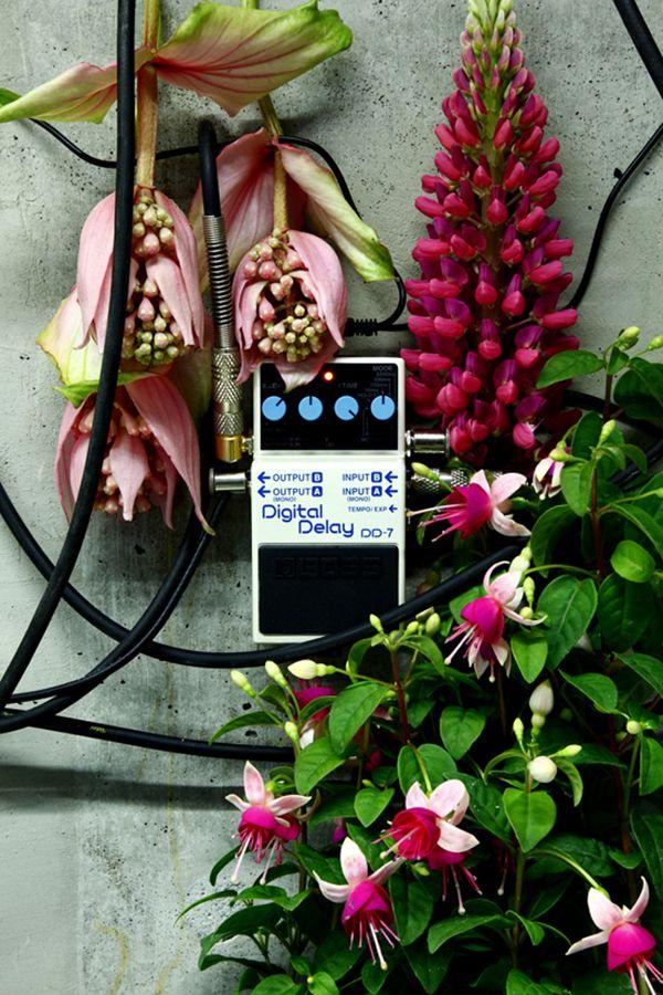 Azuma Makoto's Distortion Flowers