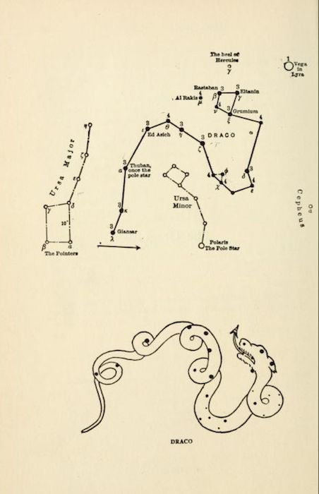 """nemfrog: """"The constellation Draco. Star lore of all ages. 1911. """""""