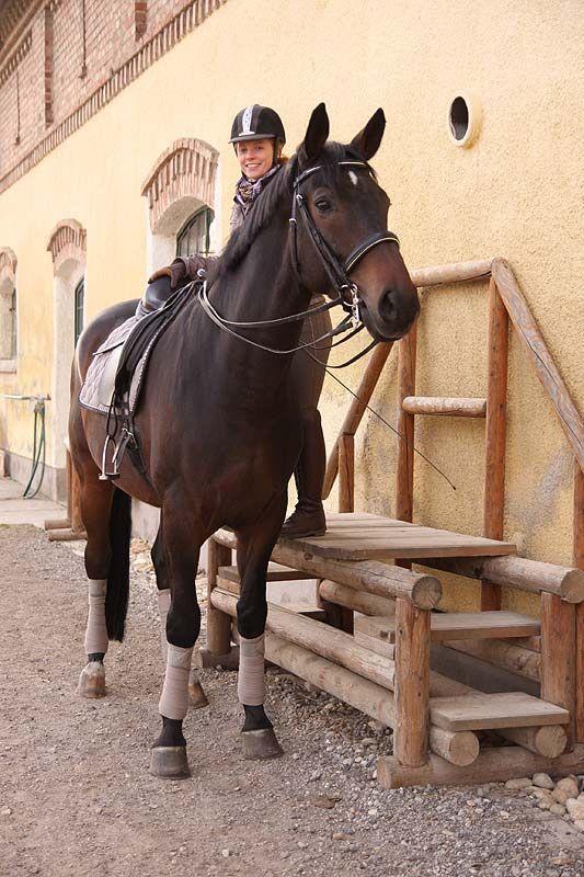 Diese fix installierte Aufstiegshilfe bietet hohen Komfort für Pferd und Reiter – so macht Aufsteigen noch mehr Spaß.