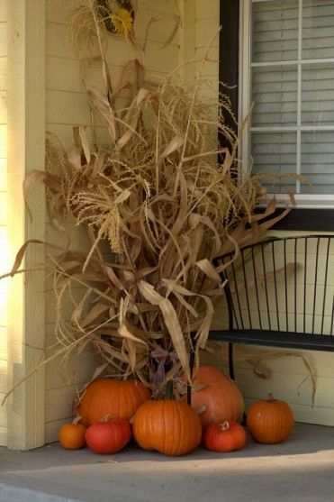Sukkot:  Hide poles of the Sukkah with beautiful corn husks.  This adds a lot of visual height!  For more Sukkot ideas, follow Everyday Simchas Pinterest Board!