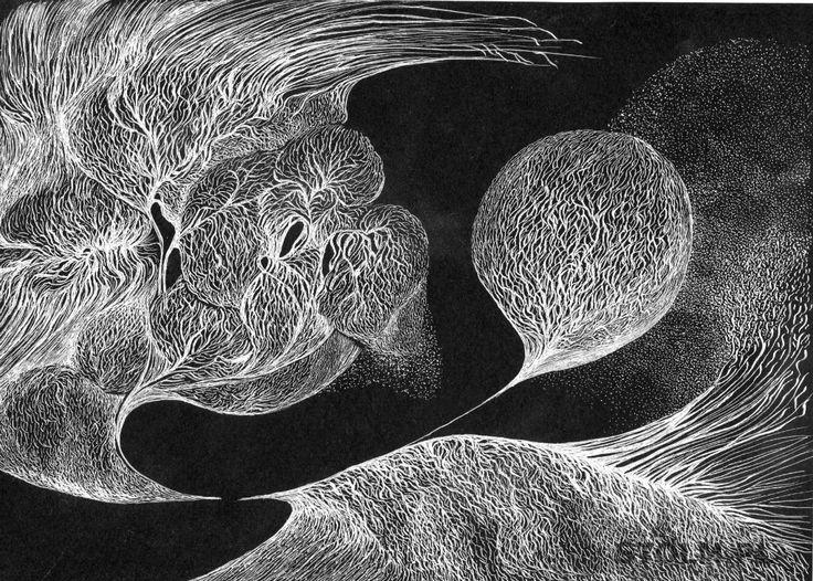 Dandelion ink on paper black and white Stanisława Olszańska Marszałek