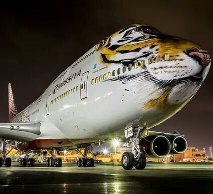 "Rossiya Airlines Boeing 747-446 in the ""Tiger Conservation"" livery"