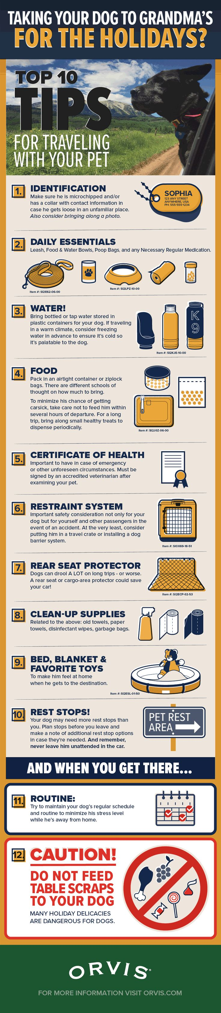 Cuddle chair related keywords amp suggestions cuddle chair long tail - Top 10 Tips For Travel By Car With Your Dog