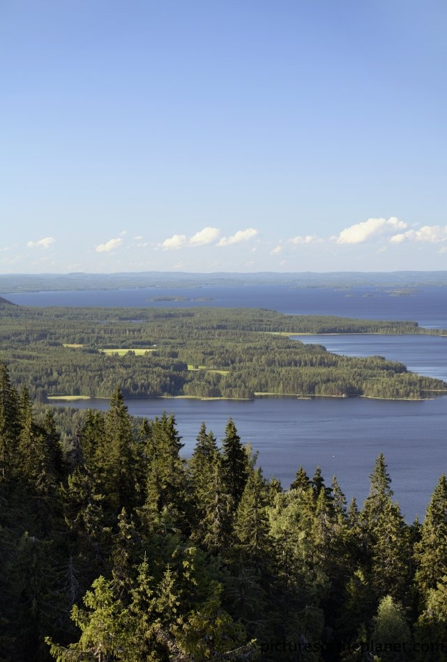 A stunning view from the wild Koli national park in Finland.