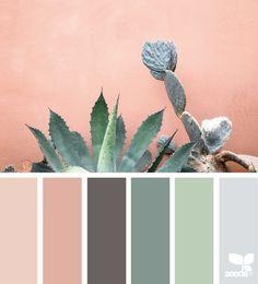 Cacti Color - http://design-seeds.com/home/entry/cacti-color9
