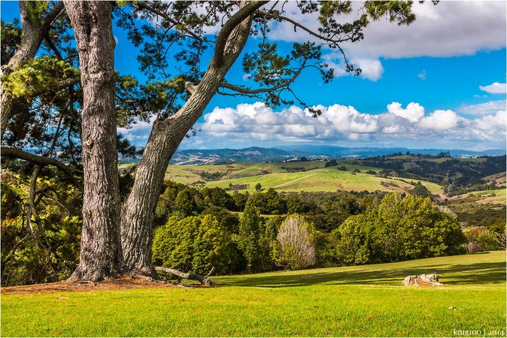 View point, Manukau, Auckland by Dmitri Ogleznev on 500px
