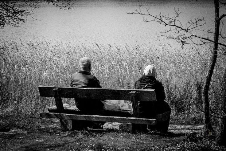 """ph. © Wil Vestjens """" Nature love."""""""