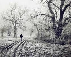 Poetiquejustis: Heart Warmth In the depth of winter, I finally learned that there was in me  an invincible summer Albert Camu