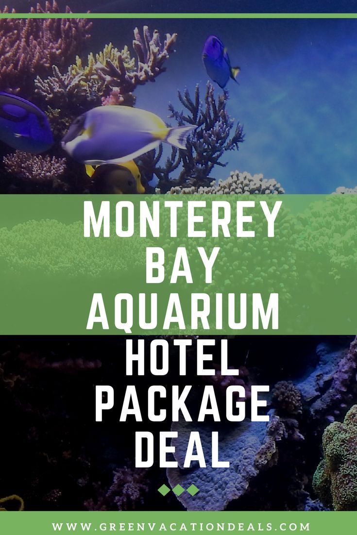 Monterey Bay Aquarium Hotel Package Deal - save money at the Monterey Bay Aquarium and stay within walking distance of downtown Monterey, Lake El Estero, Del Monte Beach, Old Fisherman's Wharf & Dennis the Menace Park.| Things To Do In Monterey California