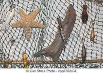 Resultado de imagen para decoracion red de pesca