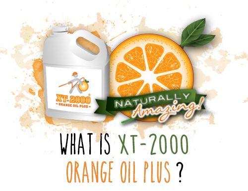 XT2000 - Orange Oil Plus® natural drywood termite treatment