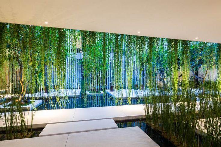 idée de jardin vertical avec des plantes grimpantes