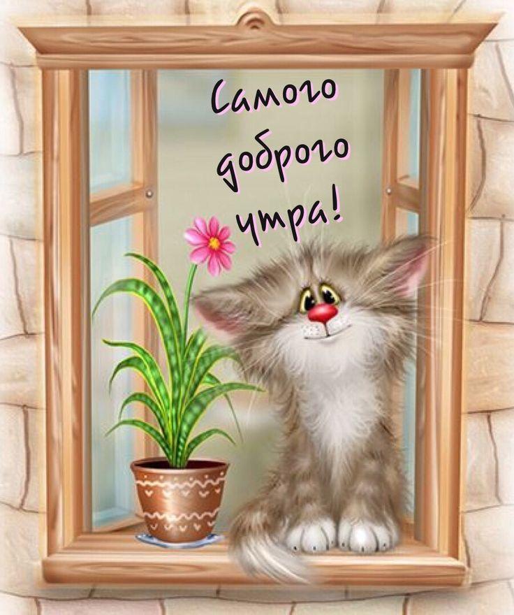 Доброе утро кот картинки мультяшная, картинки поздравления