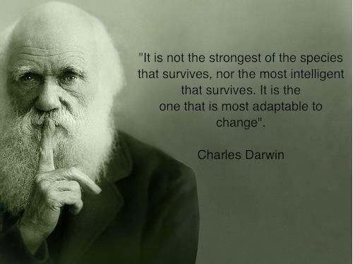 OK, so this quote is falsely attributed to Charles Darwin - he never said it. Still, good advice.