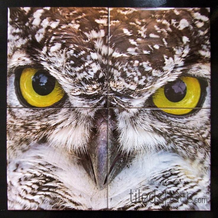 Digitally printed tile panel of an owl!