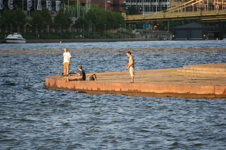 17 best images about positively pittsburgh on pinterest for Fishing in pittsburgh