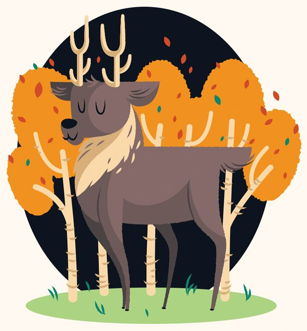 Create a Cute Deer Illustration in Adobe Illustrator - Tuts+ Design & Illustration Tutorial