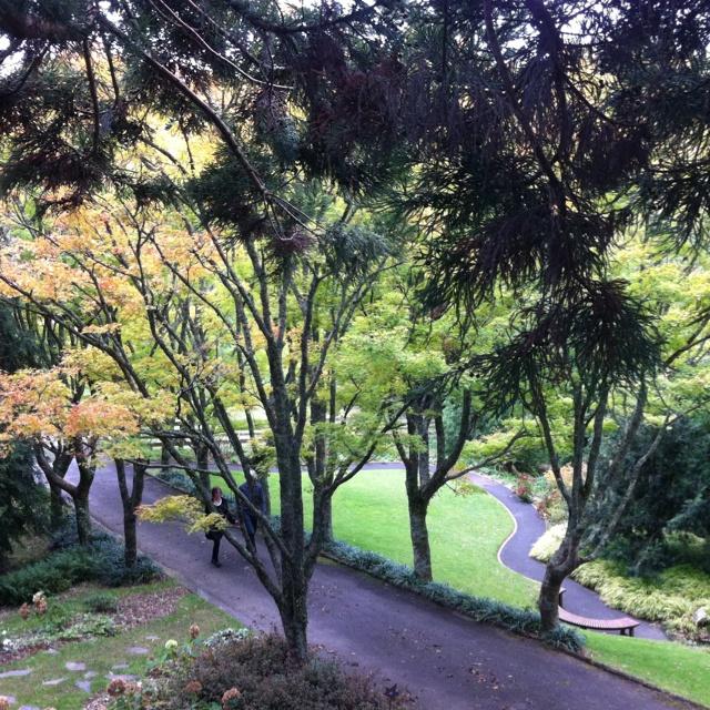 Tupare Garden, New Plymouth, New Zealand