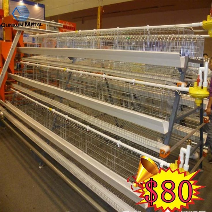gabion container price wall mesh quail cages for sale#quail cages for sale#quail