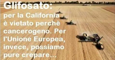 Glifosato: per la California è vietato perchè cancerogeno. Per l'Unione Europea, invece, possiamo pure crepare… | Sapere è un Dovere