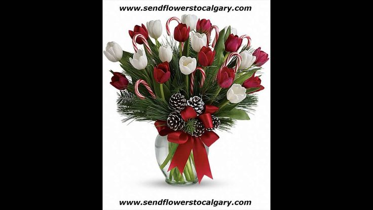 Send Flowers to Calgary by Calgary international florist. Enjoy Same Day Flower Delivery.  https://calgaryflowersdelivery.com #SendFlowersToCalgary #FlowersInCalgary #calgary_flowers
