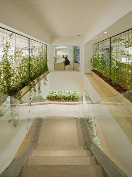 This Edible Office Grows its Own Lunch | Pasona HQ in Japan | Architecture on GOOD