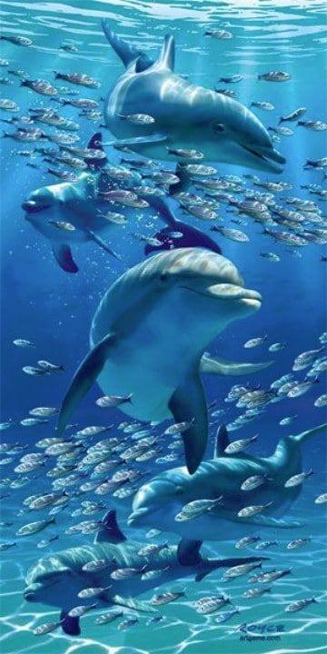 imagenes de delfines en el mar para dibujar