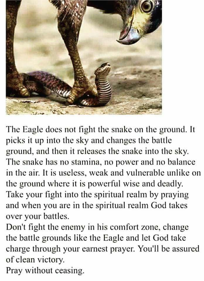 The art of spiritual warfare is know your enemy, and battle from the high ground of fervent prayer!