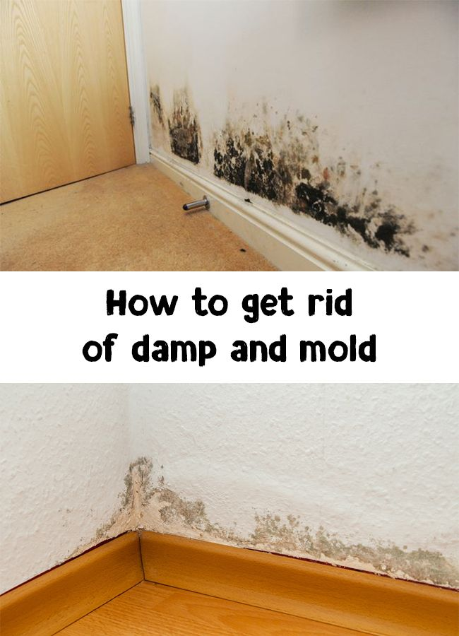 e8af56d1ffa9d93214b93a18747f09b4 - How To Get Rid Of Dampness In A Room