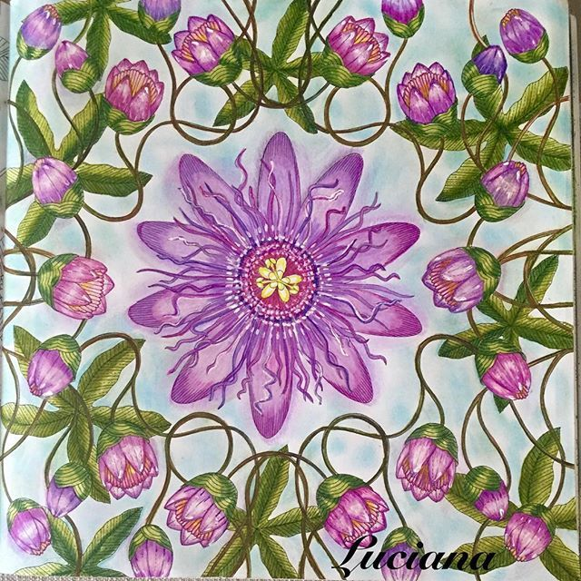 Inspirational Coloring Pages By Lucianaphisilveira Inspiracao Coloringbooks Livrosdecolorir Jardimsecreto Secretgarden