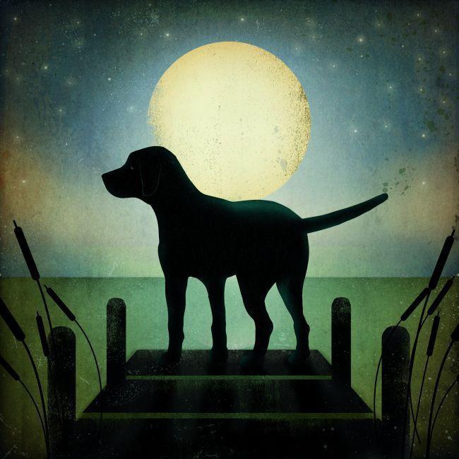 Ryan Fowler 'Moonrise Dog' Gallery Wrapped