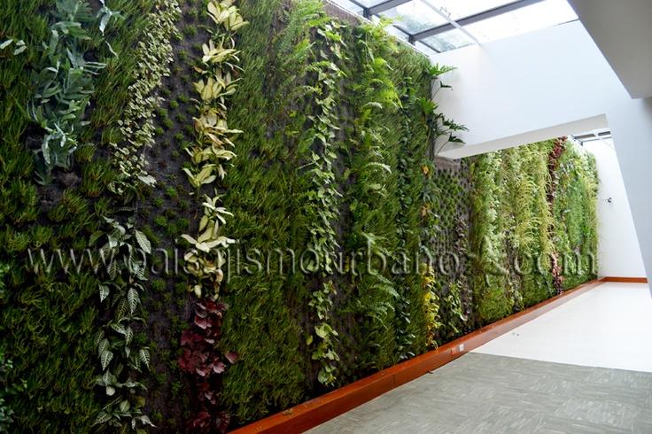 Muros verdes sistema Ignacio Solano Hotel Cosmos 100