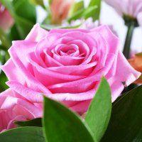 Букет «Причуда». Размер: средний. Состав: Папоротник (2 шт.), Альстромерия розовая (3 шт.), Роза розовая (5 шт.), Хризантема розовая (3 шт.)...