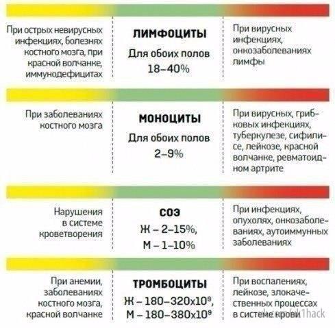 Как расшифровать анализ крови 6