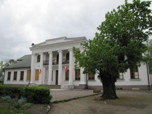 dyblin,powiat lipnowski, gmina Dobrzyń nad Wisłą