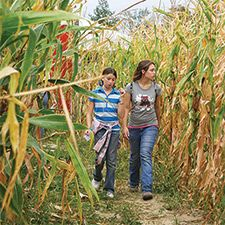 Fall #Festivals, Pumpkin Patches, #Haunted Houses, Corn Mazes, Trails & Hayrides and other Fall activities in #Dayton.