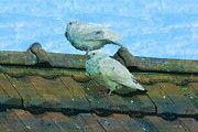 """New artwork for sale! - """" Pigeons Dove White Dove Pigeon  by PixBreak Art """" - http://ift.tt/2lDyE2q"""