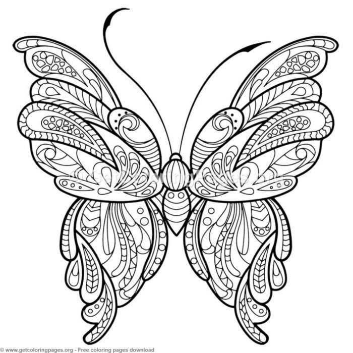 2 Zentangle Patterns Butterfly Coloring Pages Getcoloringpages Org Coloring Colo Butterfly Pictures To Color Insect Coloring Pages Butterfly Coloring Page
