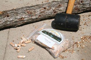 How I grew Shiitake Mushrooms on a log.