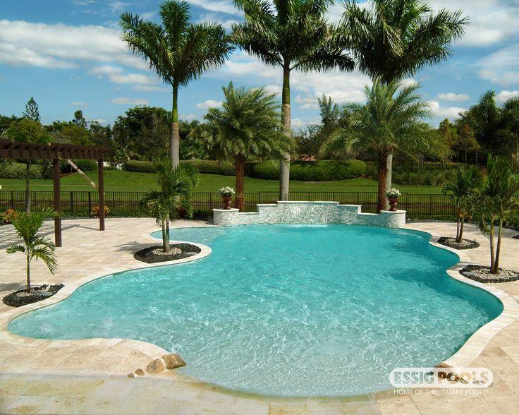 Freeform pool, raised spa, tanning ledge, paver deck.