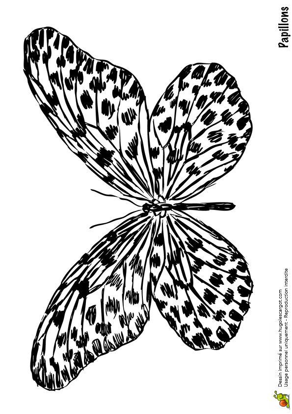 papillon tachete transfert tiquettes typos en 2018 pinterest papillon coloriage papillon. Black Bedroom Furniture Sets. Home Design Ideas