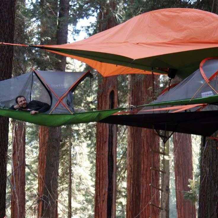 Tentsile Connect Tree Tent Orange & Best 25+ Tree tent ideas on Pinterest | Suspended tent House like ...