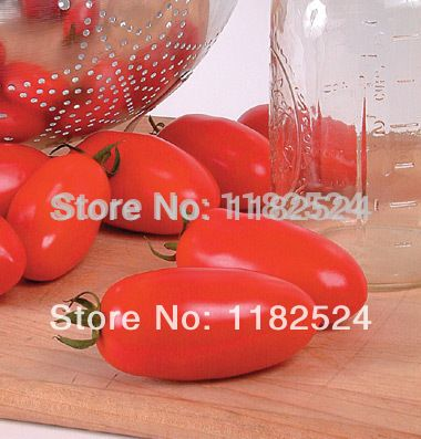 50 * высокая - уступая сан - дж. марцано 168 ( f1 ) семена помидоров фрукты овощи семена