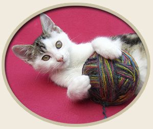 Free knit, crochet and sewing patterns @  this site ~ to provide comfort in cages for animals @ shelters.
