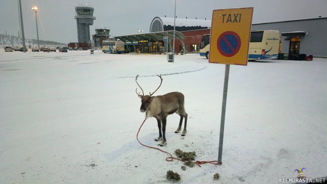 Airport taxi in Finnish Lappland
