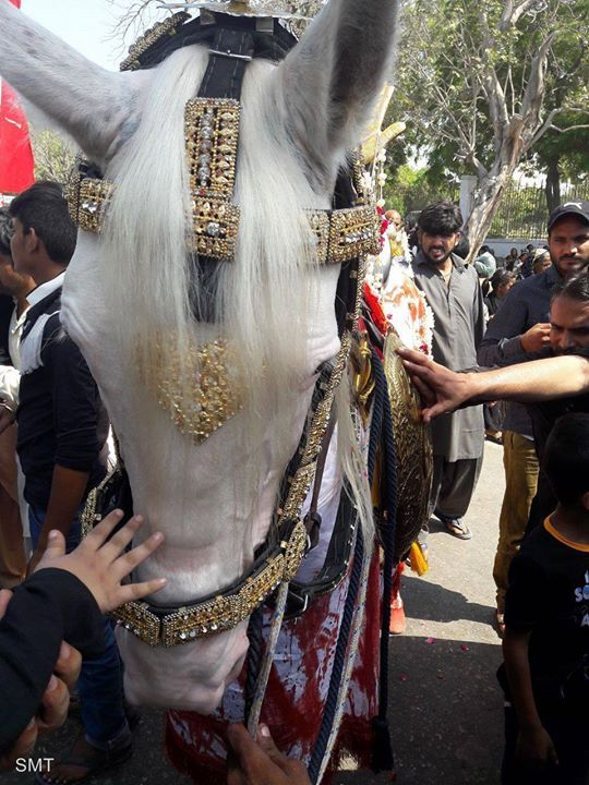 Markazi Ashura Procession - Karachi Pakistan  (10 Muharram 1438 / 2016 - Karachi Pakistan)  Photography: Raza Rizvi  Shia Multimedia Team - SMT http://ift.tt/1L35z55