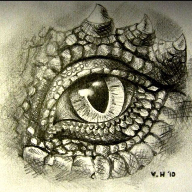 Graphite pencil drawing- dragon's eye  Artist: Victoria Highet