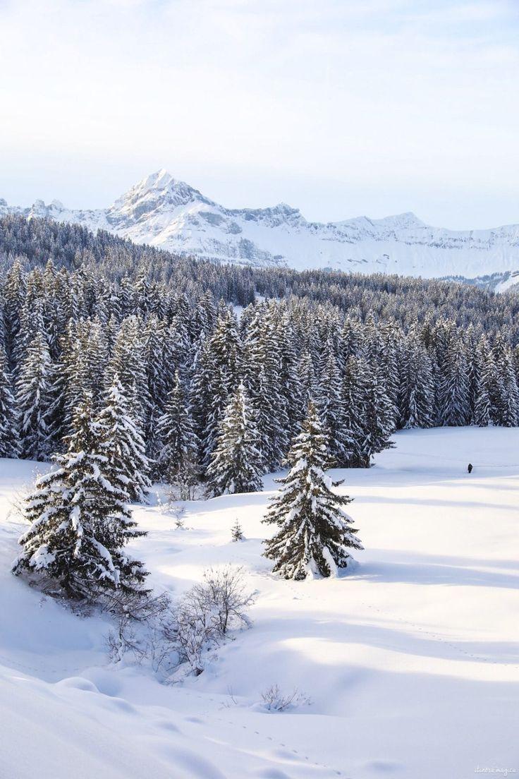 Ski Et Autres Aventures Aux Saisies En Savoie Itinera Magica Com Ski Paysage Montagne Paysage