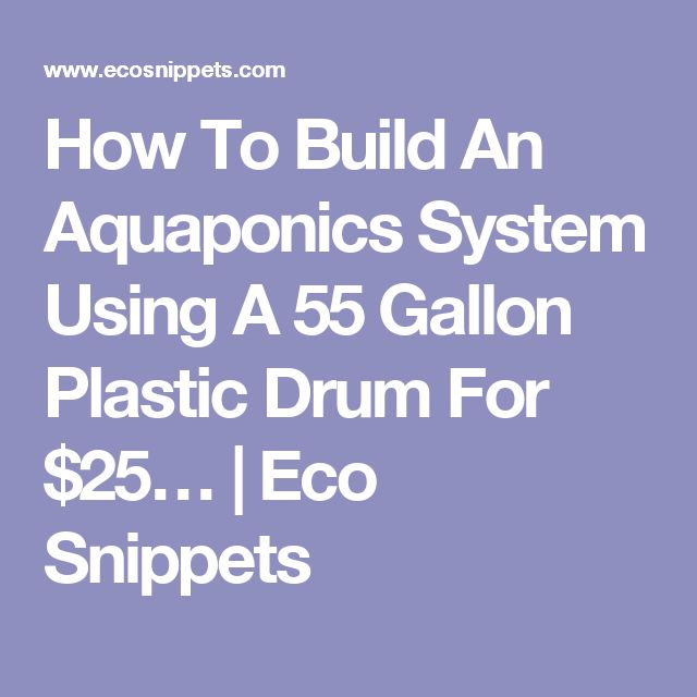 How To Build An Aquaponics System Using A 55 Gallon Plastic Drum For $25… | Eco Snippets
